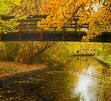 Bridge to Autumn by J. D. Adsit