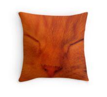 Sleeping Ollie Kitten(Orange) Throw Pillow