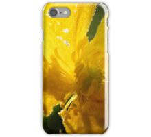 Dew and Early Morning Light on a Buttercup  iPhone Case/Skin