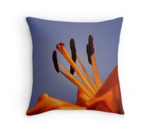 Up Looking Throw Pillow
