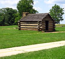 Log Cabin by Laurie Puglia