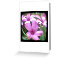 Garden of Weeds Greeting Card