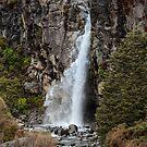 Taranaki Fall  Tongariro National Park by DebbyScott