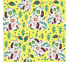 Fruit pattern  Photographic Print
