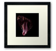 Cat Breath Framed Print