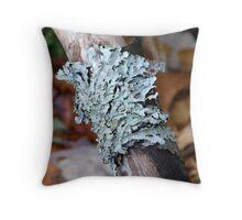 Green Shield Lichen Throw Pillow