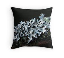 Green Shield Lichen #2 Throw Pillow