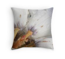 dewdrops on pale rhodo flowers  Throw Pillow