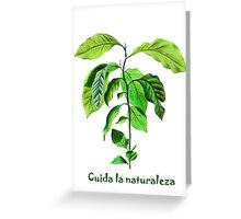 Take care of the nature Greeting Card