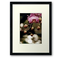 waiting for the right time... Framed Print