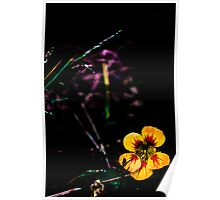 Bright Flower Poster