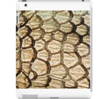 Dragon Skin iPad Case/Skin