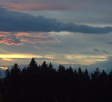 Mount Rainier Sunrise by CARMAKAT