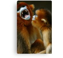 """My, what big teeth you have!"" Canvas Print"