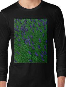 Lavender meadows Long Sleeve T-Shirt