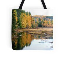 Opeongal Provincial Park Tote Bag