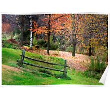 Serene In Nature Poster