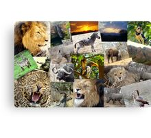 MY SOUTH AFRICA Canvas Print