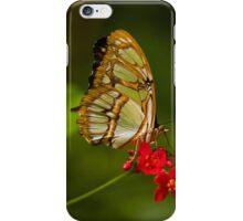 Beautiful Wings iPhone Case/Skin