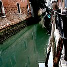 Venice Canal by Stormswept