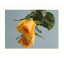 Yellow Rose on Glass Art Print