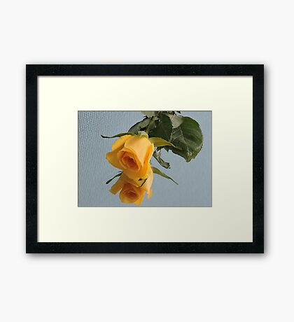 Yellow Rose on Glass Framed Print