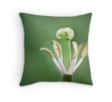 beauty is only skin deep, but ugly goes clean to the bone... Throw Pillow