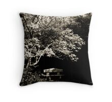A seat in the park Throw Pillow