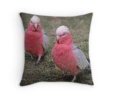 Galah Duo Throw Pillow