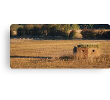 Cressage Defence Canvas Print