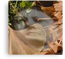 Ghost In leaves Canvas Print