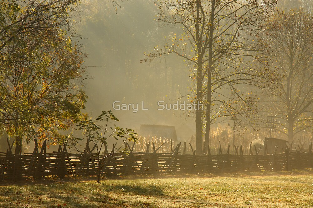 Golden Morn II by Gary L   Suddath