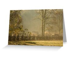 Golden Morn II Greeting Card