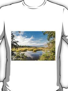 Green Marsh Grasses Under Blue Sky T-Shirt