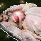 Fairy Princess by Tara Paulovits