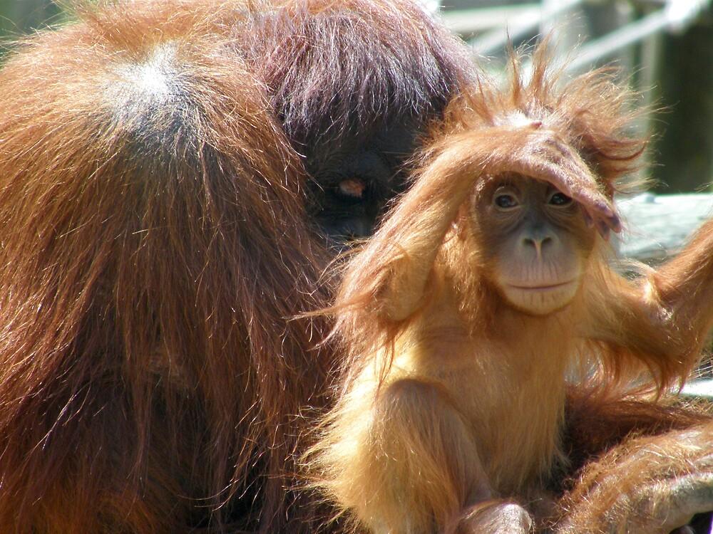 Mum, look at all those hairless apes!!! by Marina Ribeiro