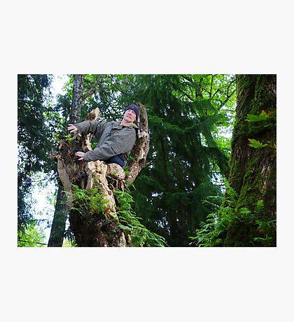 Treebeards Revenge Photographic Print