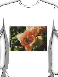 Light Peach Lilly T-Shirt