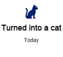 Turned into a cat - today by Alice Haslam