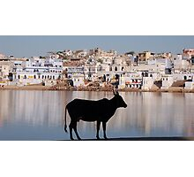 Pushkar, Rajasthan Photographic Print