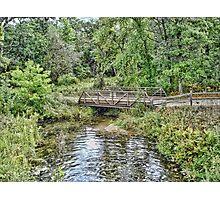 Hartman Creek Photographic Print