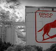 Dingo Flour - Fremantle - WA by Colin  Williams Photography