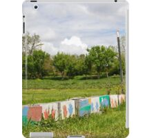 Painted Blocks iPad Case/Skin