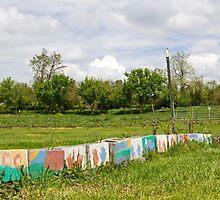 Painted Blocks by lennieslights