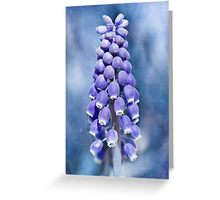 The Grapes of Spring Greeting Card
