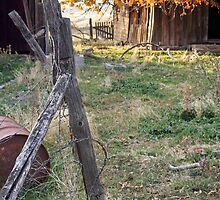 """Abandoned Ranch House"" by Lynn Bawden"