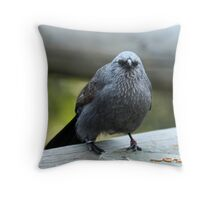 Apostlebird Throw Pillow