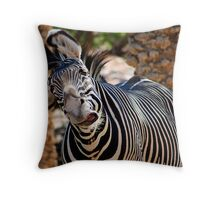 Crazy Stripes Throw Pillow