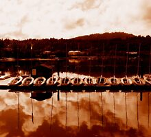 Boats in a row by Anita Kovacevic