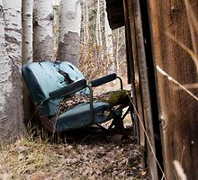 Well Worn Seat by KDPhotos